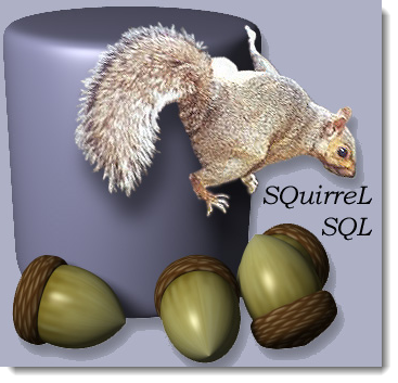 squirrel_hbase